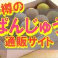 ぱんじゅうキャプチャ (1)